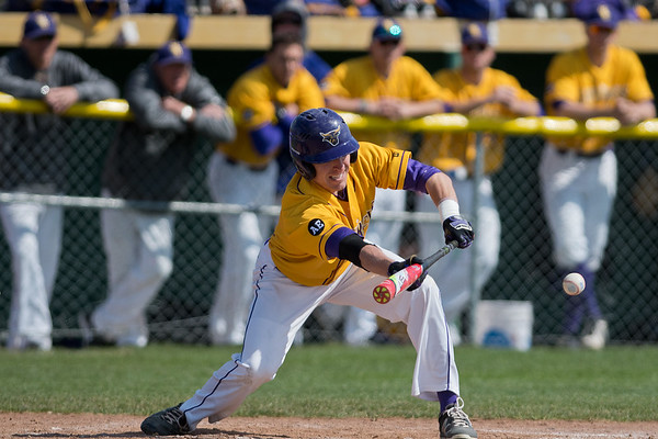 Minnesota State's Josh Wenzel lays down a sacrifice bunt in the first of two games played against Sioux Falls on Tuesday. Wenzel's bunt drove in the winning run to help the Mavericks win 2-1. Photo by Jackson Forderer