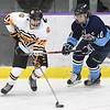 Mankato East/Loyola girls hockey v. Albert Lea
