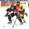 Mankato East/Loyola v. Mankato West boys hockey 1