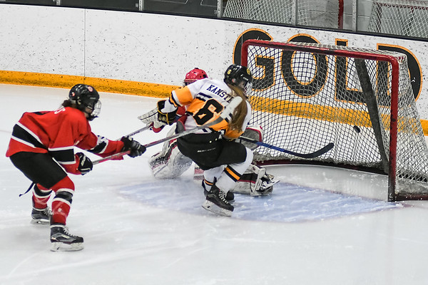 Mankato East/Loyola's Sydney Kanstrup puts in a rebound past Mankato West goalie Sarah Olsen in the Section 3A championship game. Photo by Jackson Forderer