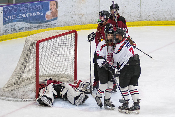 Mankato West's Courtney Bloemke (7) and Sunshine Langworthy celebrate after the Scarlets scored a goal against Fairmont in Thursday's Section 3A playoff game played at All Seasons Arena. Bloemke and Langworthy each had four points in the game. West shutout the Cardinals with a 9-0 win. Photo by Jackson Forderer