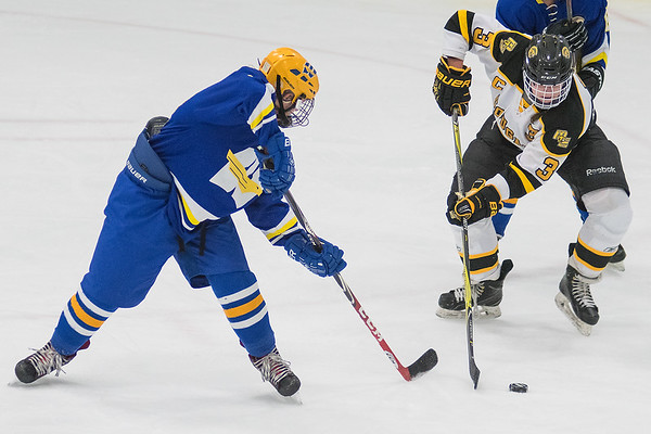 Mankato East/Loyola's Camryn Steinberg steals the puck away from Windom Area's Abagail Turner in Thursday's Section 3A playoff game. East won in overtime 3-2. Photo by Jackson Forderer