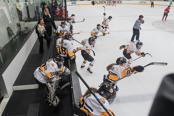 The Mankato East/Loyola girls hockey team jumps off the bench after defeating Mankato West 4-3 on Tuesday to gain a berth in the state tournament. Photo by Jackson Forderer