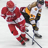 Mankato East's Sydney Kanstrup (right) lifts the stick of Luverne's Kamryn Van Batavia to steal the puck in the second period of Saturday's Section 3A semifinal game. East won in overtime 4-3. Photo by Jackson Forderer