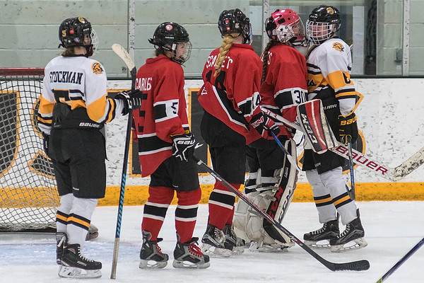 Mankato West goalie Sarah Olsen (second from right) gets in the face of Mankato East/Loyola forward Sydney Kanstrup after a brief skirmish in front of the net. Photo by Jackson Forderer