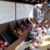 Pat Christman<br /> Mark Buck arranges apples at his stand at the Mankato Farmers Market Saturday.