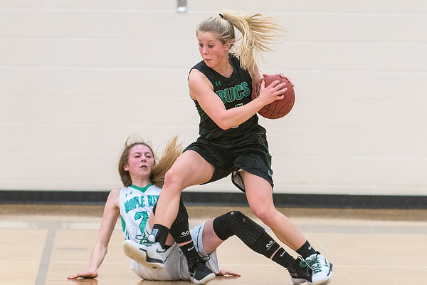 Waterville-Elysian-Morristown's MaeLea Harmon knocks over Maple River's Victoria Barkosky during the second half of Friday's Section 2A playoff game. No called was made on the play. Photo by Jackson Forderer