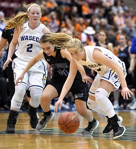 Waseca girls basketball v. Academy of Holy Angels 4