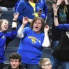 Waseca boys basketball fans