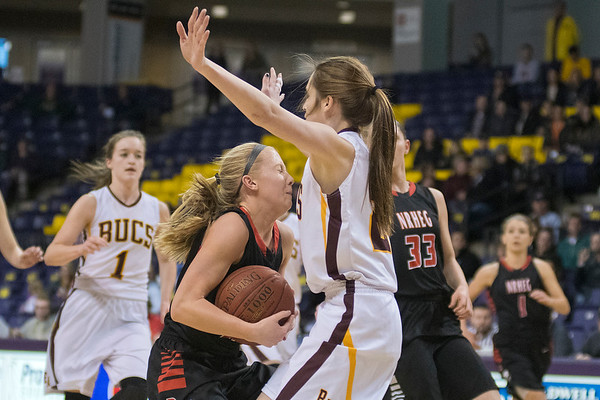 New Richland-Hartland-Ellendale-Geneva's Rachel Collins runs into Blue Earth Area's Sidney Blair in Tuesday's Section 2AA semifinal game played at Bresnan Arena. Photo by Jackson Forderer