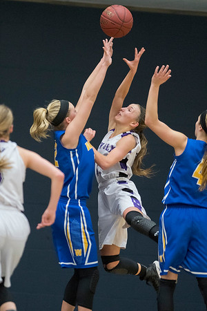 Joey Batt of New Ulm puts up a shot over Waseca's Hannah Potter in the second half of the Section 2AAA championship game played at Gustavus on Thursday. The Bluejays edged the Eagles 61-56 to qualify for the state tournament. Photo by Jackson Forderer