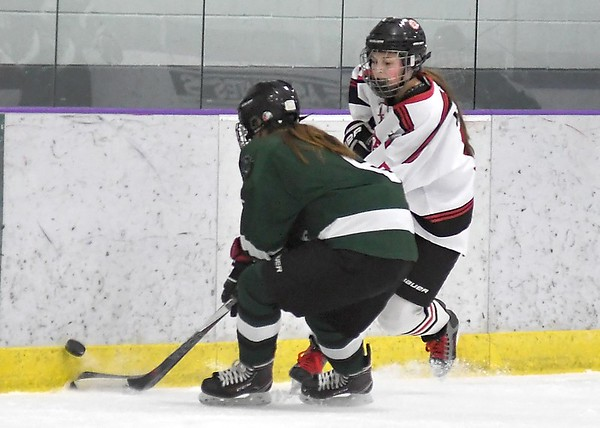 Mankato West girls hockey preview