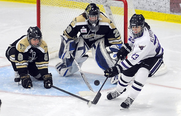 Lindenwood goalieNicole Hensley and teammate Megan Cox (8) keep an eye on Minnesota State's Melissa Klippenstein in front of the net during the second period Saturday at All Seasons Arena.