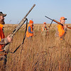 John Cross<br /> From from to back, host hunters Wade Johnson and Scott Becker guide Dennis Frederickson, DNR Southern Region director and C.B. Bylander, DNR outreach chief, through pheasant cover on Saturday near  Madelia. The group flushed several birds and shot at and missed one rooster.