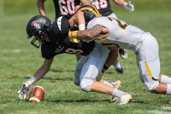 Nathan Golisch (left) of Martin Luther College recovers Gustavus' Dutch Claybaugh's fumble during a punt in Saturday's game played in New Ulm. Photo by Jackson Forderer
