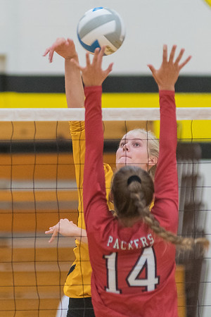 Lexi Karge of Mankato East tips the ball over the block of Austin's Avery Thompson (14) in the third set of play. East won the match in three straight sets. Photo by Jackson Forderer