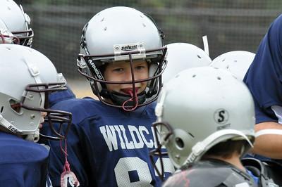 Wildcats PW Navy 2011