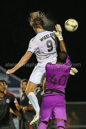 Wilington Hammerheads Soccer