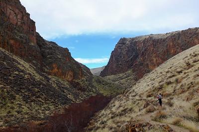 Reynolds Creek canyon.