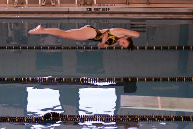 10 10 08 Windsor Diving-354