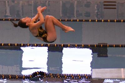 10 10 08 Windsor Diving-383