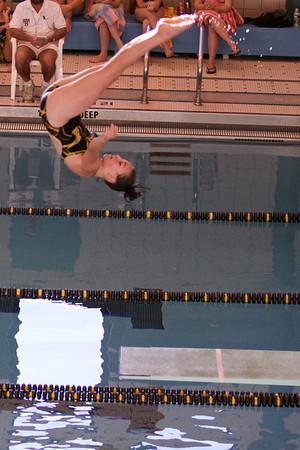 10 10 08 Windsor Diving-352