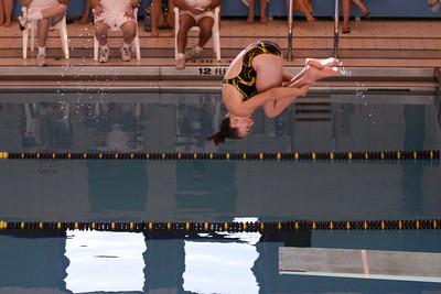 10 10 08 Windsor Diving-340