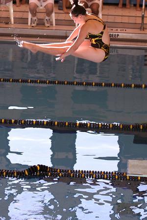 10 10 08 Windsor Diving-335