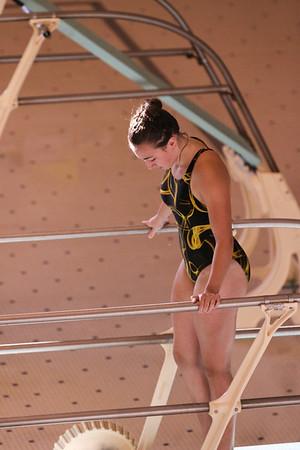 10 10 08 Windsor Diving-325