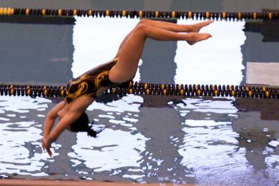 10 10 08 Windsor Diving-384
