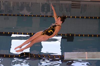 10 10 08 Windsor Diving-355