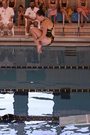 10 10 08 Windsor Diving-341