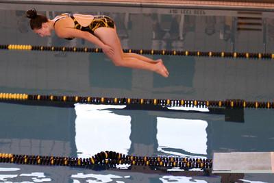 10 10 08 Windsor Diving-360