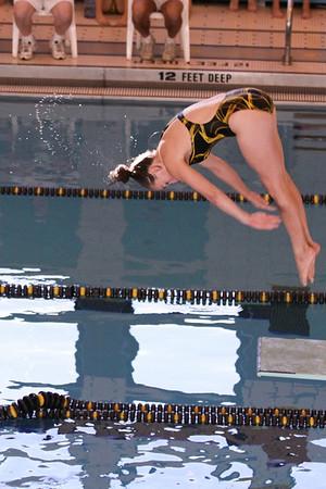 10 10 08 Windsor Diving-334