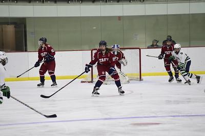 Girls' Varsity Hockey v Williston