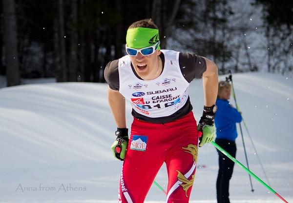 Nordic Ski - French Championships 2014