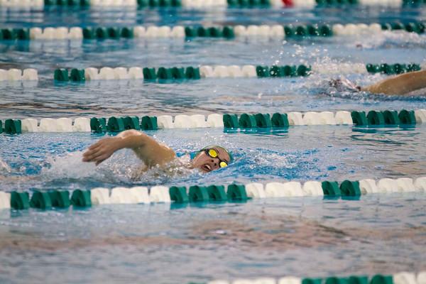 SAM HOUSEHOLDER   THE GOSHEN NEWS<br /> Concord swimmer Jordan Weaver swims the 500 yard freestyle during the meet Thursday.