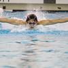 SAM HOUSEHOLDER | THE GOSHEN NEWS<br /> Concord swimmer Stephen Krecsmar swims the 100 yard butterbly Thursday during the meet against Penn. Krecsmar finished in 53.7 seconds.