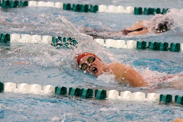 SAM HOUSEHOLDER   THE GOSHEN NEWS<br /> Goshen swimmer Gale Immel swims during the girls 500 yard freestyle event Tuesday against Northridge.