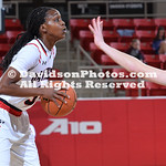 NCAA WOMENS BASKETBALL:  DEC 31 Saint Louis at Davidson