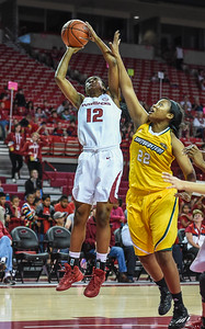 Arkansas Lady Razorbacks guard Briunna Freeman (12) shoots during a basketball game between Arkansas and Southeastern Louisiana on November 13, 2015.    (Alan Jamison, Nate Allen Sports Service)