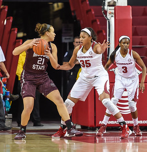 Arkansas Lady Razorbacks center Alecia Cooley (35) defends during a basketball game between Arkansas and Missouri State on December 2, 2015.    (Alan Jamison, Nate Allen Sports Service)