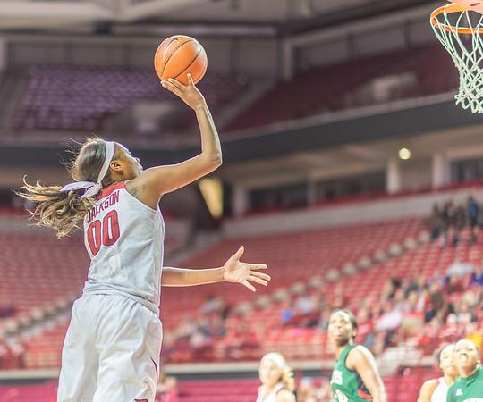 Arkansas Lady Razorbacks forward Jessica Jackson (00) shoots during a basketball game between Arkansas and Mississippi Valley State on December 28, 2015.    (Alan Jamison, Nate Allen Sports Service)