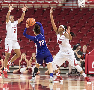 Arkansas Lady Razorbacks guard/forward Aaliyah Wilson (2) and Jessica Jackson defend during a basketball game between Arkansas and Northwestern State on Sunday, December 18, 2016.  (Alan Jamison, Nate Allen Sports Service)