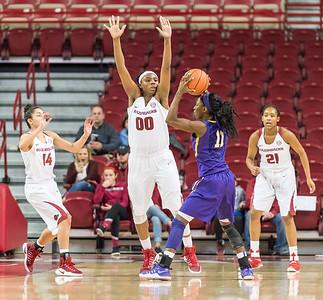 Arkansas Lady Razorbacks forward Jessica Jackson (00) defends during a basketball game between Arkansas and LSU on Sunday, January 08, 2017.  (Alan Jamison, Nate Allen Sports Service)