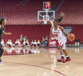 Arkansas Lady Razorbacks guard Briunna Freeman (12) passes during a basketball game between Arkansas and Oklahoma Baptist University on Thursday, November 3, 2016.  (Alan Jamison, Nate Allen Sports Service)