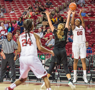 Arkansas Lady Razorbacks forward Jessica Jackson (00) shoots during a basketball game between Arkansas and Oklahoma Baptist University on Thursday, November 3, 2016.  (Alan Jamison, Nate Allen Sports Service)