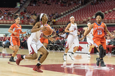 Arkansas Lady Razorbacks guard Briunna Freeman (12) drives during a basketball game between Arkansas and Sam Houston State on Friday, November 11, 2016.  (Alan Jamison, Nate Allen Sports Service)