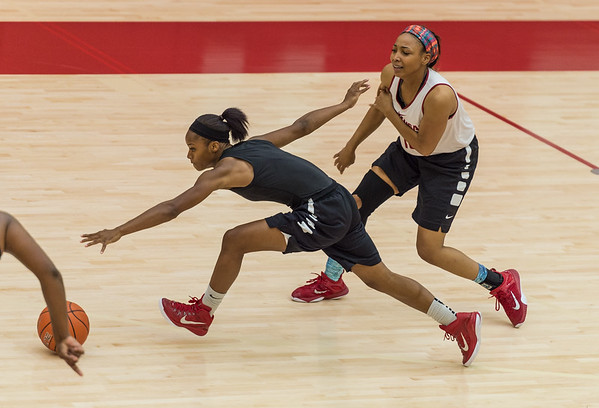 Jordan Danberry chases a loose ball at practice during the Women's Basketball Media Day at the new Basketball Performance Center at the University of Arkansas.  (Alan Jamison, Nate Allen Sports Service)