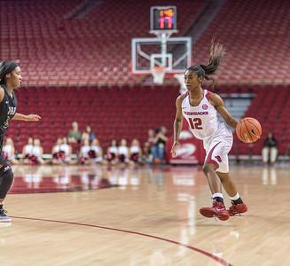 Arkansas Lady Razorbacks guard Briunna Freeman (12) passes during a basketball game between Arkansas and Oklahoma Baptist University on Thursday, November 3, 2016.  (Alan Jamison, Nate Allen Sports Service)